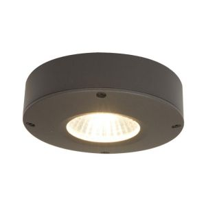 Ansell Callisto LED Wall/Ceiling Lights (Graphite)